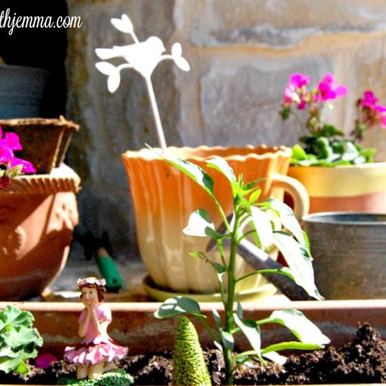 Patio Gardening & Easter Grass