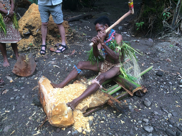 A man extracts sago from the palm tree - Tufi, Papua New Guinea