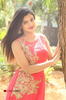 Telugu Actress Anusha Stills at Dhyavudaa Movie Teaser Launch  0020.JPG