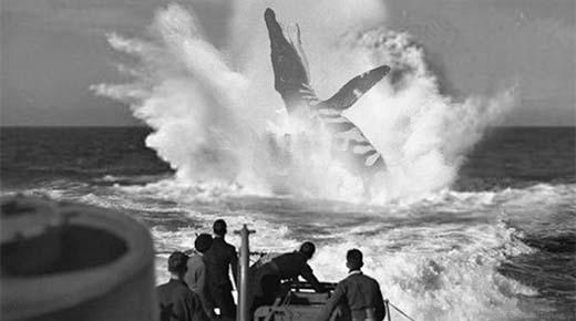 Tripulación del submarino alemán U-28 vieron un enorme monstruo marino (1915)
