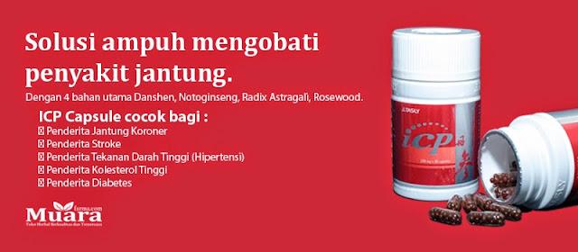 obat herbal jantung koroner akut, icp capsule, icp kapsul