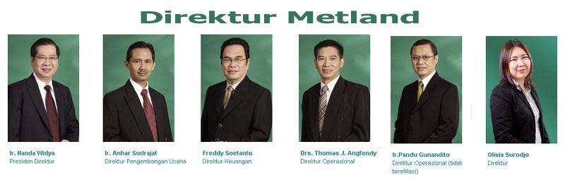 Direktur PT Metropolitan Land Tbk. (Metland)