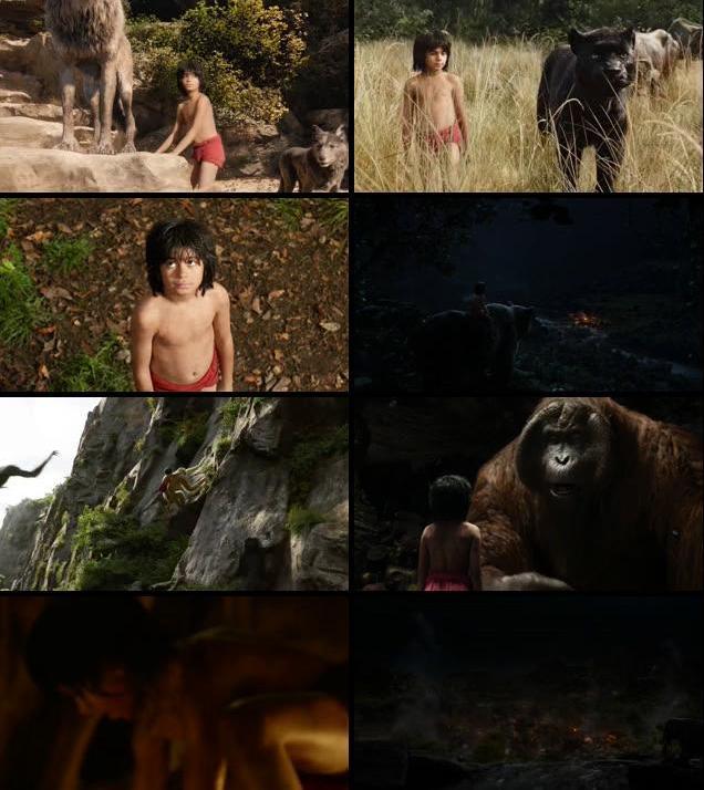 The Jungle Book 2016 English DVDRip