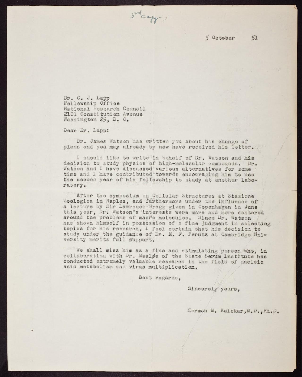 Sample Of University Deferral Letter