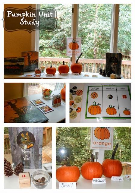 Fun Ways for Exploring Pumpkins in Autumn, pumpkin activities, Fall Preschool theme, Fall Kindergarten Theme, Fall Activities for kids, Pumpkin Science