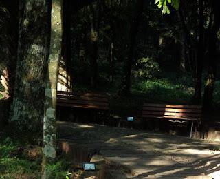 Horto Florestal, em Nova Prata