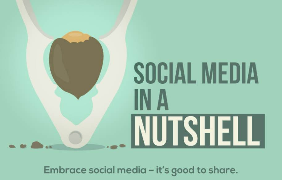 Social Media In A Nutshell: Embrace Social Media – It's Good To Share - infographic