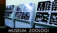 wisata bogor museum zoologi