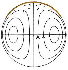 Don Findlay's Plate Tectonics Blog