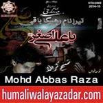 http://audionohay.blogspot.com/2014/10/mohd-abbas-raza-nohay-2015.html