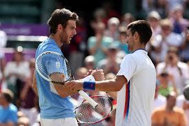 Novak Djokovic vs Juan Martin del