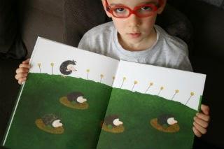 Libro infantil El huevo del erizo