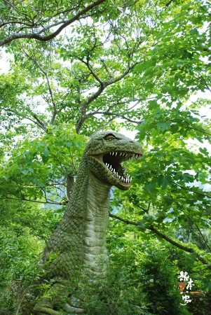 東勢林場遊樂區-油桐花螢火蟲還有各種恐龍|台中東勢油桐花季