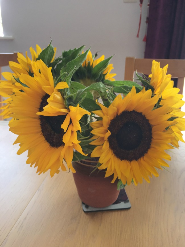 using-flowers-in-your-home-sunflowers-in-earthenware-jug