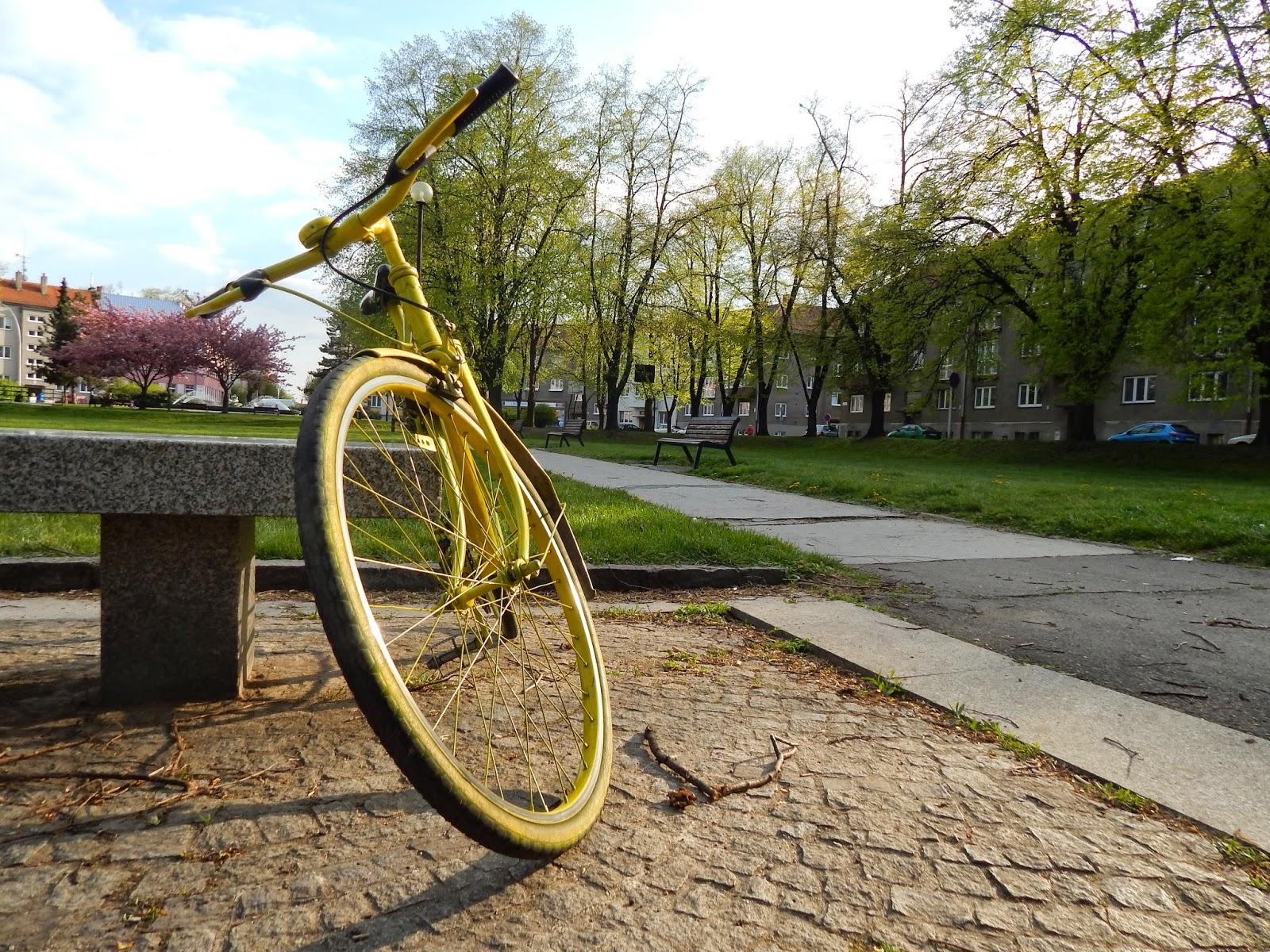 Žluté kolo