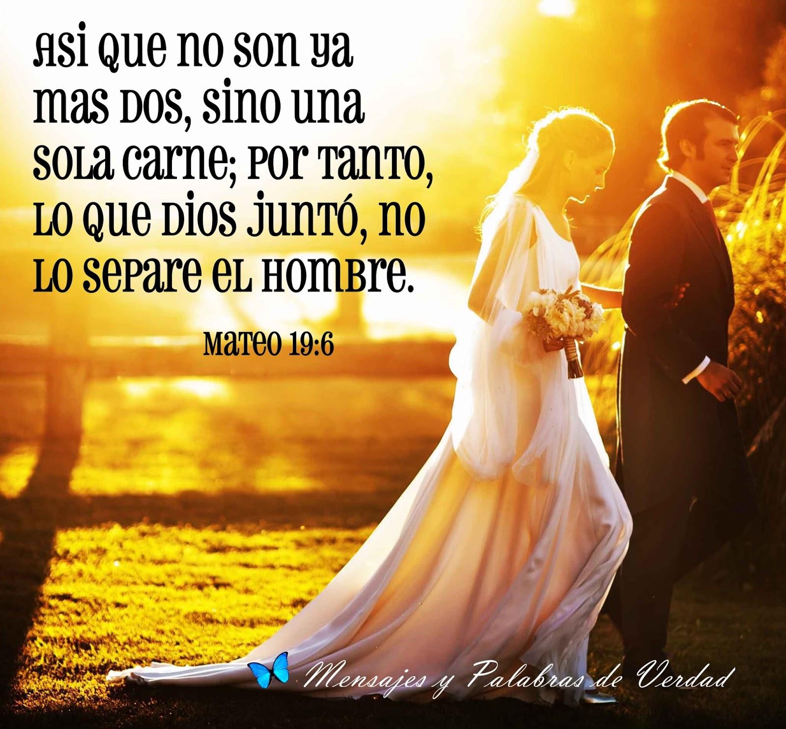 Matrimonio Cristiano Biblia : Mensajes y palabras de verdad versiculos biblicos para bodas