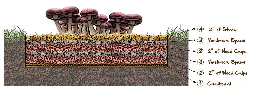 how to make giant mushrooms