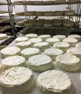 perail, perail fabrication, lait cru brebis, ferme de la blaquiere, fromage aveyron, blog fromage, tour du monde fromage, fromagerie paris, la laiterie de paris, faire fromage, faire fromage brebis, perail aop, perail fermier, pierre coulon, brebis lacaune fromage