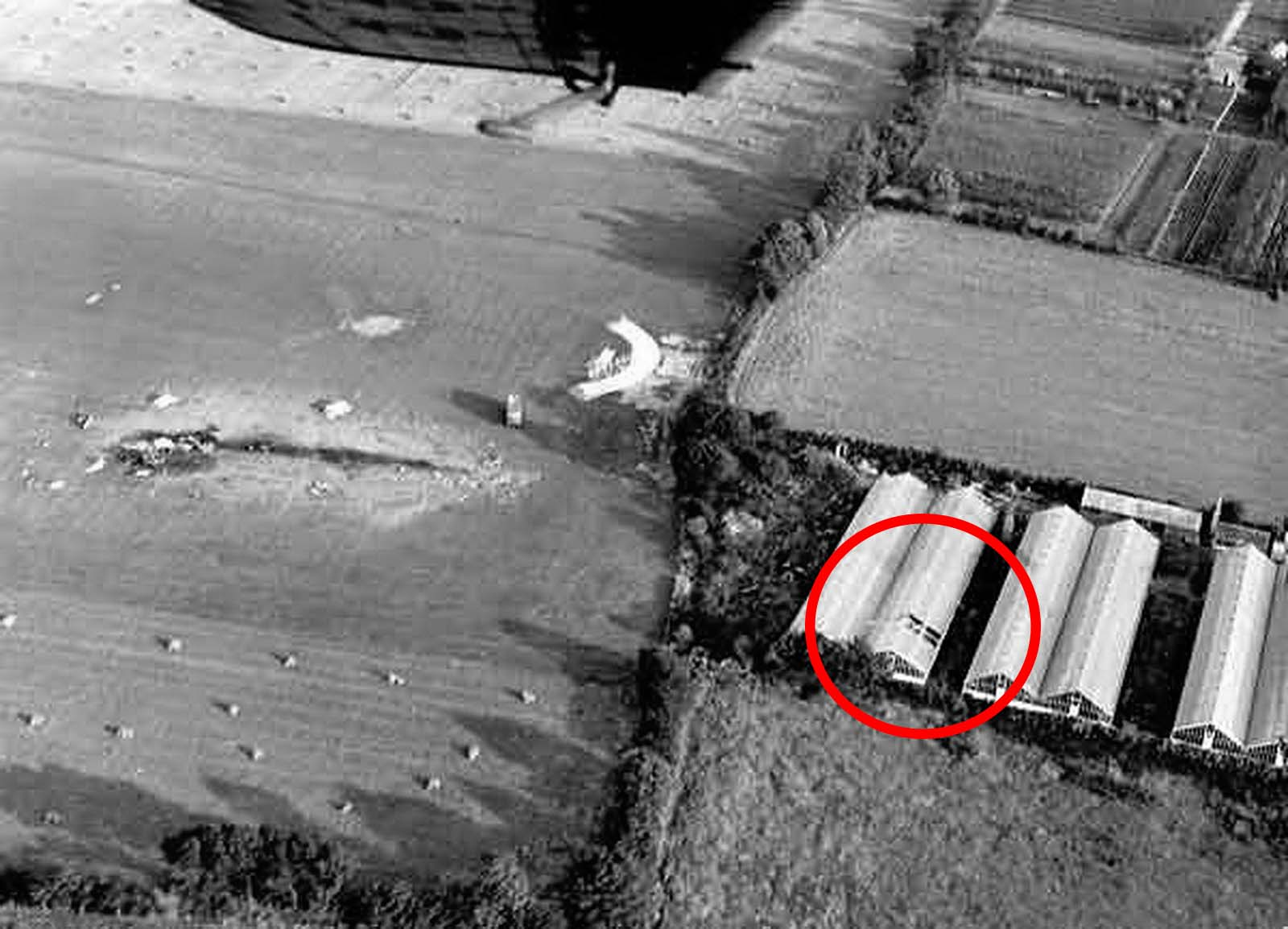The hole where George and the ejection seat went through the glass roof can be seen in the above picture in the near end of the roof of the second greenhouse from the left.