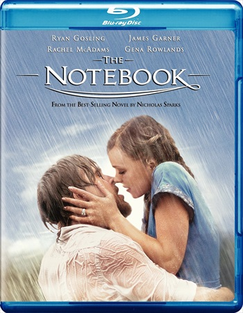 The Notebook 2004 Dual Audio Hindi Bluray Download