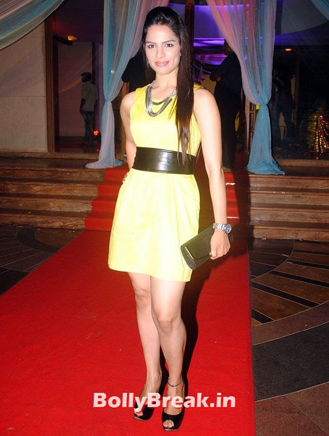 Shikha Singh, Indian Tv Serial Mahabharat Heroines and Heroes Pics from Success Party