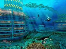 Travel Trip Journey Hydropolis Underwater Hotel Dubai
