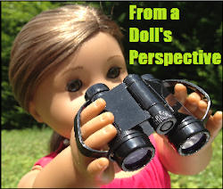 Click Here To Go To Anna's Blog, FromADollsPerspective!