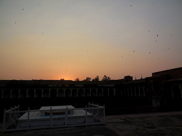 Birds circling Red Fort at dusk