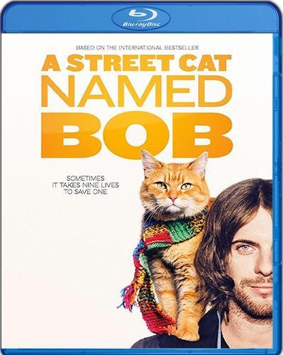 A Street Cat Named Bob [2016] [BD50] [Español]