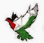 Colombe palestinienne