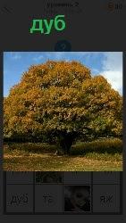 460 слов 4 растет огромный дуб с большой кроной 2 уровень