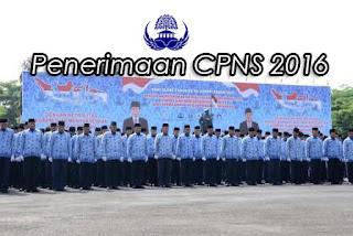 Penerimaan CPNS 2016