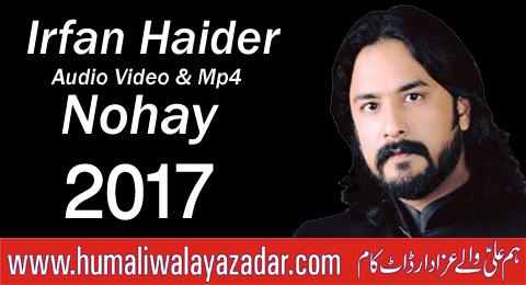 Nohay online video
