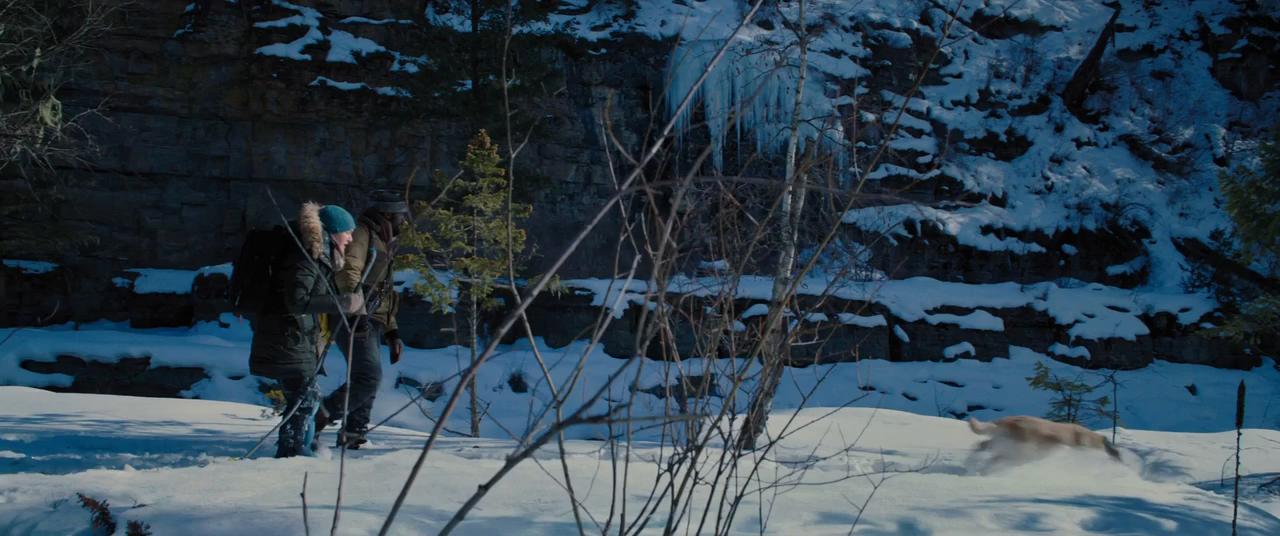 Más allá de la Montaña (2017) BRRip 720p Latino - Ingles captura 3