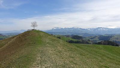 Beim Aussichtspunkt Oberlehn