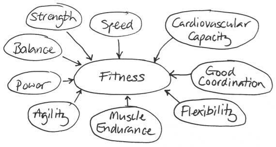 Fitness,Health,General knowledge & programming