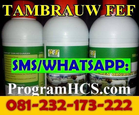 Jual SOC HCS Tambrauw Fef