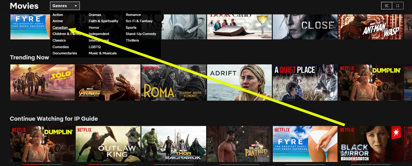 I just unblocked Canadian Netflix with NordVPN
