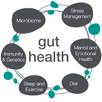 science of lifestyle and gut health