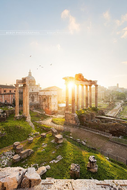 Italy Travel Guide: 10 Best Places to Visit in Rome - Roman Forum