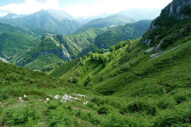 Mayáu de Prieya - Ruta de La Sierra del Crespón