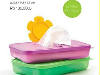 Wadah Tissue Box Small Tupperware (2)
