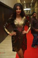 Pooja Hegde looks glamarous in deep neck sleevless short tight golden gown at Duvvada Jagannadham thank you meet function 013.JPG
