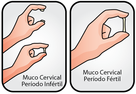 Filancia do muco cervical