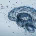 Medicamento para esclerose múltipla dará maior qualidade de vida aos pacientes