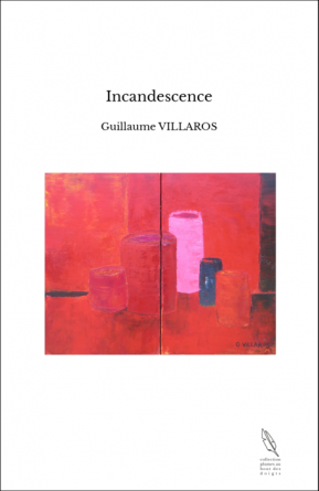 https://www.thebookedition.com/fr/incandescence-p-65054.html