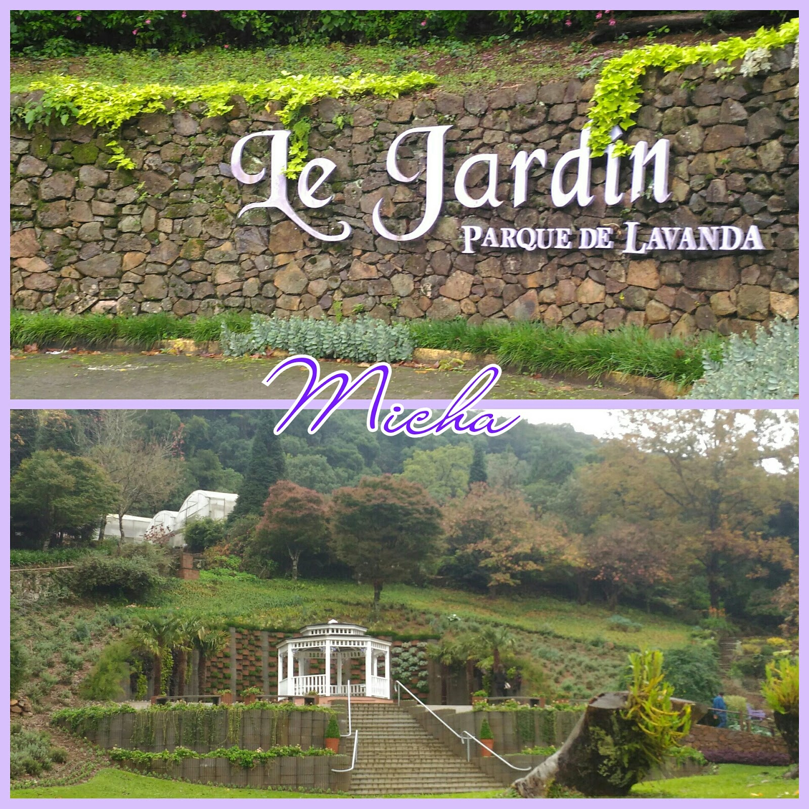 Carpe diem dia 5 parte 2 le parque jardin lavanda for Jardines de lavanda