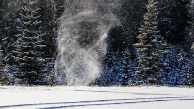 Сніговий вихор