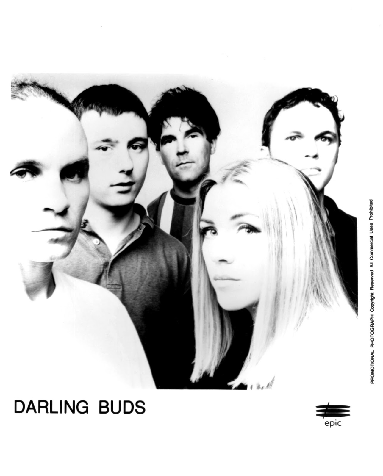 The darling buds erotica