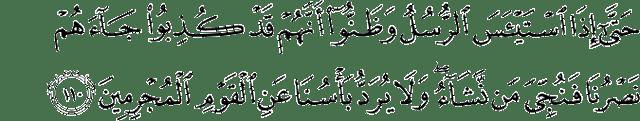 Surah Yusuf Ayat 110
